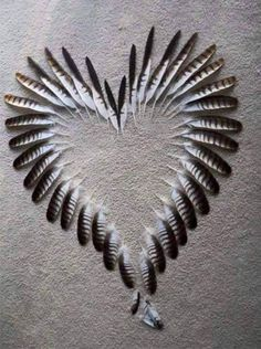 collagecab valentines crafts heart shape right which make want will easy that you are day 25 Heart Shape Crafts for Valentines Day Which Are So Easy That You Will Want To Make One Right You can find Heart art and more on our website Feather Crafts, Feather Art, Bird Feathers, Feather Wreath, Turkey Feathers, Pheasant Feathers, White Feathers, I Love Heart, Happy Heart