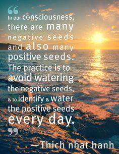 Choose the right seeds!: http://www.intromeditation.com/Wordpress/?p=dumwkperyqjvpir&utm_content=buffer08a61&utm_medium=social&utm_source=pinterest.com&utm_campaign=buffer #Balance #Motivation