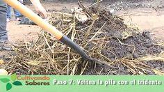 Cultivando Saberes #4 - Composteros