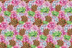 art, watercolor, succulent, seamless, pattern, flower, floral, plant, home, nature, botanical, summer, botany, cactus, natural, decor, desert, tropical, rustic, mexican, boho, round, bush, herb, exotic, shabby, perennial, blossom, pink, purple, yellow, blue, orange, green, cyan, red, texture, background, textile, graphic, decoration, colorful, illustration, design, drawing, hand, drawn, creative, artwork, aquarelle