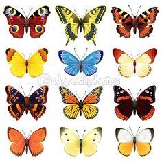 conjunto mariposa — Ilustración de stock #2010447