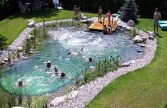 DIY natural swimming pool- permaculture magazine winter 2010