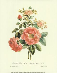 Planning a Vintage-Botanical-Print-Themed Wedding -- Most absurd idea I've ever had??