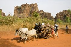 Family returning from gathering firewood outside town of Sindou, with Peaks of Sindou in background.~ Burkina Faso,Africa