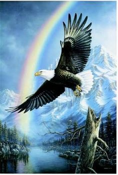 Eagle Background, Eagle Pictures, Hidden Images, Happy Birthday Pictures, Bohemian Art, White Wolf, Bald Eagle, Native American, Wildlife