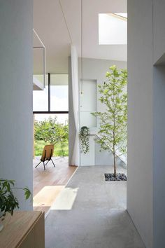 Home Interior Design — House in Ohno by Airhouse Design Office ( HID ) Interior Design Inspiration, Home Interior Design, Interior Architecture, Interior Modern, Patio Interior, Interior And Exterior, Rue Verte, Indoor Trees, Indoor Outdoor