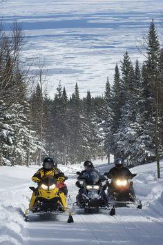 Mythique circuit, le Grand Tour de la Gaspésie en motoneige, c'est 1 160 km de pur bonheur! En suivant le Trans-Québec 5, il vous faudra de 5 à 7 jours pour le compléter. Vous y verrez les monts Chic-Chocs, les arbres ensevelis de neige, des points de vue spectaculaires sur la mer et, bien sûr, l'imposant rocher Percé. Un incontournable à vivre au moins une fois! Photo : Studio du Ruisseau. Grand Tour, Points, Atv, Circuit, Photos, Train, Studio, Chic, Snowmobiles