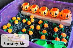 We traded in our apple books for pumpkin books at the library this week so I switched out our Apple Sensory Bin for Five Little Pumpkins. My daughter could not wait to get her hands on it. {This post Autumn Activities, Halloween Activities, Sensory Activities, Toddler Activities, Sensory Play, Preschool Halloween, Halloween Crafts, Learning Activities, Halloween Ideas