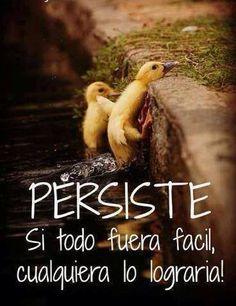 persiste si todo fuera facil, cualquiera lo lograria!  #citas #frases