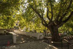 souliotismansion-arxontiko soulioti Greece Holiday, Sidewalk, Cottage, Holidays, Mansions, Country, House, Holidays Events, Manor Houses