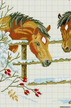 Gallery.ru / Фото #6 - лошади