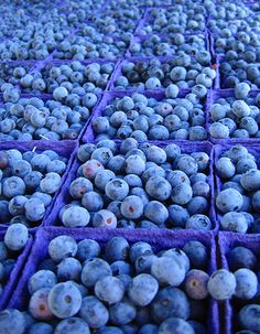 Blueberries. cool photo