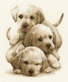Labrador Puppies Cross Stitch Kit By Vervaco Cross Stitch Numbers, Cross Stitch Bird, Beaded Cross Stitch, Cross Stitch Animals, Counted Cross Stitch Kits, Cross Stitch Charts, Cross Stitch Designs, Cross Stitching, Cross Stitch Embroidery