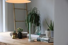 De Zaktus | Inspiration | Home Plants, Home, Ad Home, Plant, Homes, Haus, Planets, Houses
