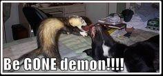 Demon!!!