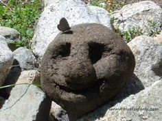 If it's hypertufa, it's fun and humorous...I have got to make some of these!!!