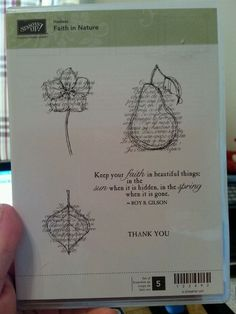 Stampin Up FAITH IN NATURE Clear Mt Stamp Set SCRIPT Leaf Pear Flower Thank You #StampinUp
