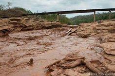 Parque do Rio doce depois do rompimento das barragens.