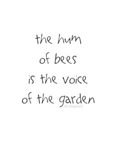 I love watching the bees buzz in my flower garden I Love Bees, My Love, Buzz Bee, Bee Art, Garden Quotes, Bee Happy, Save The Bees, Bees Knees, Queen Bees