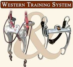 """Are you tired of using training aids and over biting your horse to get good results? Try the Mikmar Western Training System.  Daily, use the Mikmar Training Bit to improve and encourage:      Collection     Head Set     Suppleness     Develop a Soft Fresh Mouth, that stays that way  Then transition to the """"Rancher"""" bit for competitions and showing, for continued superior results with the Mikmar Western Training System."""