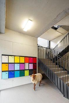 Galería de Residencia Estudiantil en Kamp-Lintfort / bob-architecktur BDA - 4