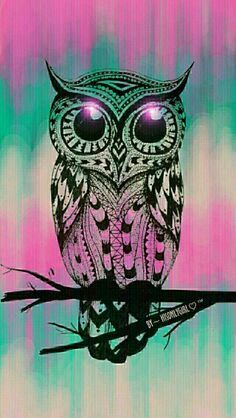 Cute owl, grunge wallpaper I created for the app CocoPPa. Android Wallpaper, Owl Pictures, Owl Wallpaper Iphone, Wallpaper, Drawings, Cute Owls Wallpaper, Galaxy Art, Art, Owl Wallpaper