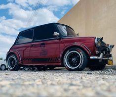Mini Cooper Custom, Mini Cooper Classic, Classic Mini, Classic Cars, Mini Copper, Old Muscle Cars, Minis, Jeep Cars, Automotive Art