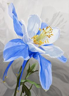 Air Spirit Columbine Print