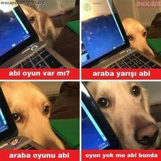 Cs Go, Wii U, Cringe, Baekhyun, Dankest Memes, Funny Animals, Haha, Video Games, Funny Pictures