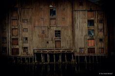 Brygger. Foto Tom Andre Michael.