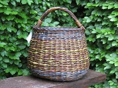 Basket, black willow and twisted willow bark.