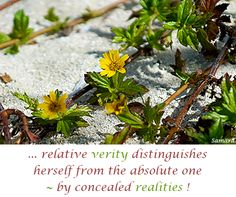 ... relative #verity distinguishes herself from the absolute one ~ by concealed #realities !