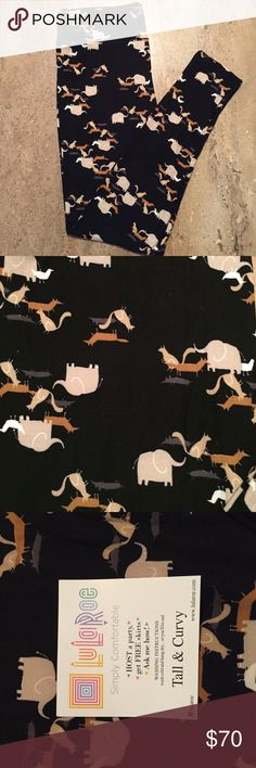 New TC Rare Unicorn Leggings  Unicorn LuLaRoe Leggings TC. Elephant, Cat, Duck and Mouse print on black background. Fits sizes 12-24. The price reflects the rarity. Please no pricing questions in comments. Feel free to make an offer and ask about the leggings LuLaRoe Pants Leggings