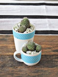 Add life to your flower-pots with Washi tapes. To make a quick cup planter, simply add potting soil, keep cactus and succulents and wrap Washi tape around it! Simple and easy! #DIY