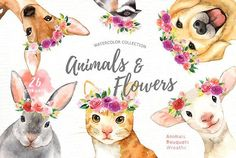 Animals & Flowers Watercolor Clipart by everysunsun on @creativemarket