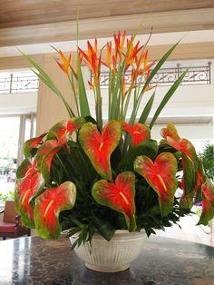 Resultado de imagem para arranjos de flores naturais com anturios
