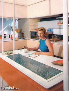"Promotional booklet for the Monsanto House of the Future at Disneyland, 1960 - 2. The kitchen had ""powered refrigeration shelves, micro­wave range, [and an] ultra­sonic dish­washer with new safety-glass top ... "" None of which were available in 1960, the booklet notes. Where are *our* ultrasonic dishwashers, future world?!"