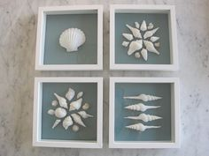 Framed sea shells. Thought of you as I see the girls like to collect shells :-)