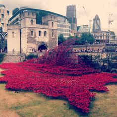 """""""Blood Swept Lands and Seas of Red"""" by Paul Cummins Installation of 888,246 ceramic poppies Tower of London"""