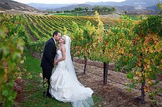 Wedding Photos - Temecula Wineries & Leoness Cellars-Temecula-Restaurant & Weddings