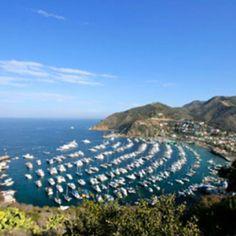 Catalina Island, CA - I learned to jet ski amongst all those boats