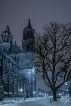 Magdeburg Dom in snow