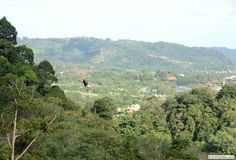 Flying Hanuman Zip Line  Canopy Walk, Phuket, Thailand http://www.flyinghanuman.com