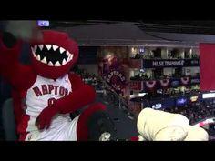 separation shoes 8615a 1033d Raptors Fans Cheer On The Raptor