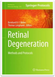 Methods in Molecular Biology Vol.935 - Retinal Degeneration Methods and Protocols, 384 Pages | Sách Việt Nam