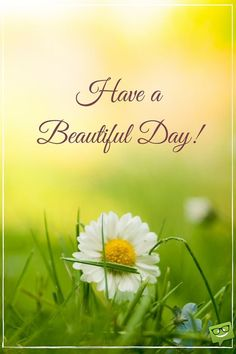 Good Day Quotes: A New Day Starts! - Quotes Sayings Good Morning Picture, Good Morning Good Night, Morning Pictures, Good Morning Images, Morning Pics, Morning Texts, Morning Greetings Quotes, Good Morning Messages, Good Morning Wishes