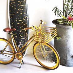 Vélo pour Femmes Grand
