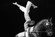 Vaulting - September 5rd - Copyright : @Sindy THOMAS PHOTOGRAPHY / Jeux Equestres Mondiaux https://www.facebook.com/MissSthomasPhotographies