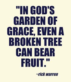 In God's garden of grace, even a broken tree can bear fruit. --Rick warren  ~ quotes & wisdom