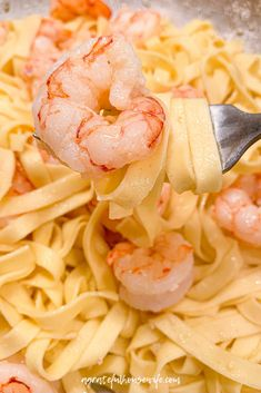 You are going to love my simple yet delicious version of shrimp scampi! It comes together in less than 30 minutes and all you need is 8 ingredients. Clean Eating Recipes, Easy Healthy Recipes, Paleo Recipes, Gluten Free Recipes For Dinner, Healthy Dinner Recipes, Easy Summer Dinners, Easy Meals, All You Need Is, Fish Recipes